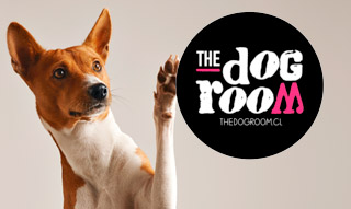 The Dog Room